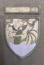 Нарукавний знак 32 РеАП Благословенна Міць (Піксель з дужкою)