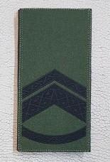 Погон Старший Прапорщик ЗСУ Олива Згідно Наказу 238 універсальний: муфта-липучка