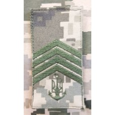 Погон ВМСУ Головний Старшина ММ14