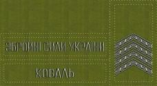 - Комплект нашивки, погони на замовлення Ваше прізвище,ЗСУ звання Згідно Наказу 238 Олива