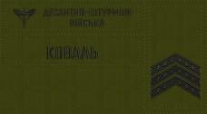 - Комплект нашивки знак ДШВ, погони на замовлення Ваше прізвище,звання Олива