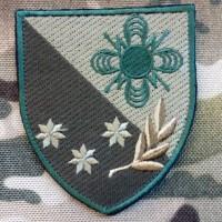 Нарукавний знак 121 окремий полк зв'язку (польовий варіант)