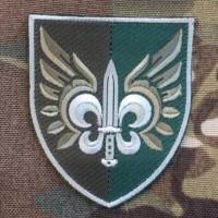Нарукавний знак 132 Окремий Розвідувальний Батальйон ДШВ  (олива, сірий кант)
