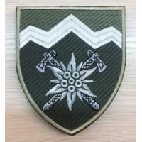 Нарукавний знак 10 окрема гірсько-штурмова бригада (олива)