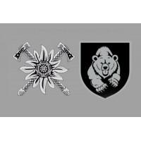 Прапор Мотопіхотний батальйон Ведмеді Сірий