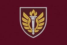 Прапор 199 НЦ ДШВ (марун)