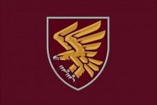 Прапор 95 ОДШБр знак (марун)