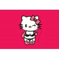 Прапор Sexy Kitty