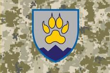 Флаг 15 ОГШБ з новим знаком Піксель