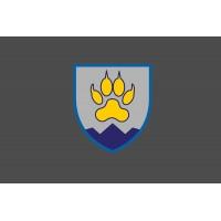 Прапор 15 ОГШБ з новим знаком (Сірий)