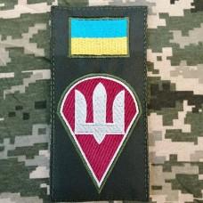 Нарукавна заглушка Десантно Штурмові Війська України (олива)