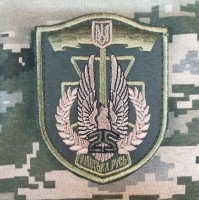 Шеврон 25 БТрО Київська Русь (олива)