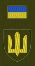 Нарукавна заглушка Сухопутні Війська ЗСУ (олива)