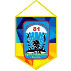 Вимпел 81 ОАеМБр України