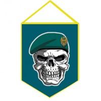 Вимпел Морська піхота Череп в береті