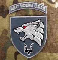 Нарукавний знак 142 НЦ ССО amat victoria curam (з дужкою)