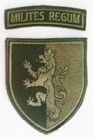 Шеврон 24 Короля Данила Механізована Бригада
