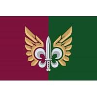 Прапор 132 Окремий Розвідувальний Батальйон ДШВ (емблема)