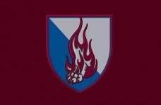 Прапор 45 Окрема Десантно-Штурмова Бригада зі знаком
