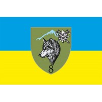 Прапор 8 окремий гірсько-штурмовий батальйон 10 ОГШБр
