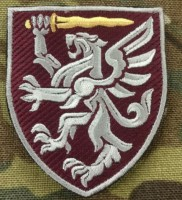 Нарукавний знак 80 ОДШБр (кольоровий варіант)
