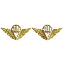 Емблема на комірець ДШВ