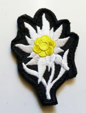Нашивка цветок Эдельвейс