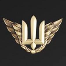 Купить Знак Авіації (на берет)  в интернет-магазине Каптерка в Киеве и Украине