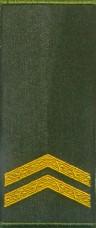 Погон парадний Мол. сержант ЗСУ нового зразка муфта