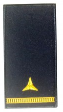 Погон майстер-сержант ДСНС (жовтий) Універсальний - муфта-липучка