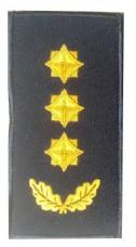 Погони полковник ДСНС (жовтий) Універсальний - муфта-липучка