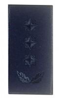 Погон полковник ДСНС (синій) Універсальний - муфта-липучка