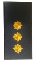 Погони старший лейтенант ДСНС (жовтий) Універсальний - муфта-липучка