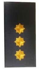Погон старший лейтенант ДСНС (жовтий) Універсальний - муфта-липучка