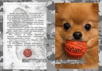Книга Цуцик Віталій Запека (з автографом автора)