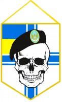 Вимпел Морської піхоти України з черепом