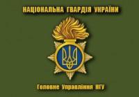 Флаг Головне Управління НГУ (Олива)