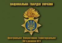 Флаг Центральне оперативно-територіальне об'єднання НГУ (олива)