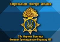 Прапор 25 Бригада НГУ