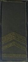 Погон на липучці олива Старший прапорщик (лички) Знижка 40%