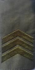 Погоны тип муфта олива сержант скидка 40%