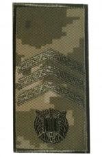 Погони курсантські Сержант на липучці Пиксель