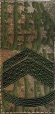 Купить Погони нового зразка Старший прапорщик Варан ЗСУ на липучці в интернет-магазине Каптерка в Киеве и Украине
