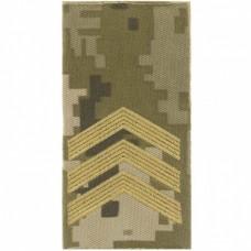 Погони ЗСУ нового зразка сержант пиксель ММ14 Муфта