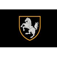 Прапор 1 Окрема Танкова Сіверська Бригада ЗСУ Варіант чорного прапору