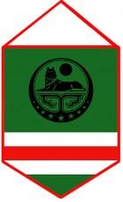 Вымпел Ичкерии (черный символ)