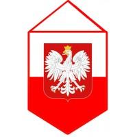 Вимпел Польща
