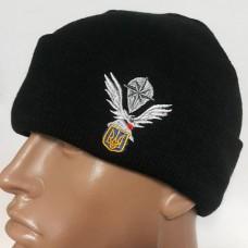 Купить Шапка з вишивкою 8 полк спецназа  в интернет-магазине Каптерка в Киеве и Украине