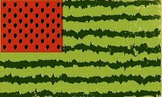 Флаг Соединенных Городов и Сел Херсонской области - флаг Херсонской области арбуз