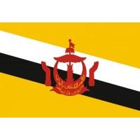 Прапор Брунею